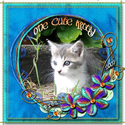 One_cute_kitty